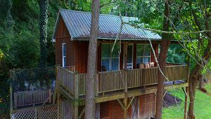 Treetop Cabin Rental Hot SPrings NC
